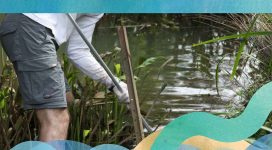 Cooks River Ecological Health Report Card 2013-2014