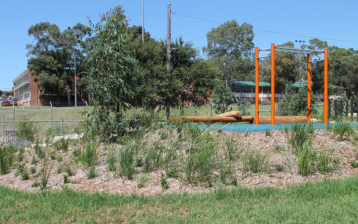 Butler Reserve raingarden and nature playground