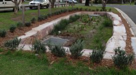 Emery Ave Raingarden