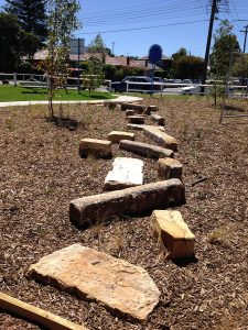 Stepping stones at Forrester Reserve raingarden