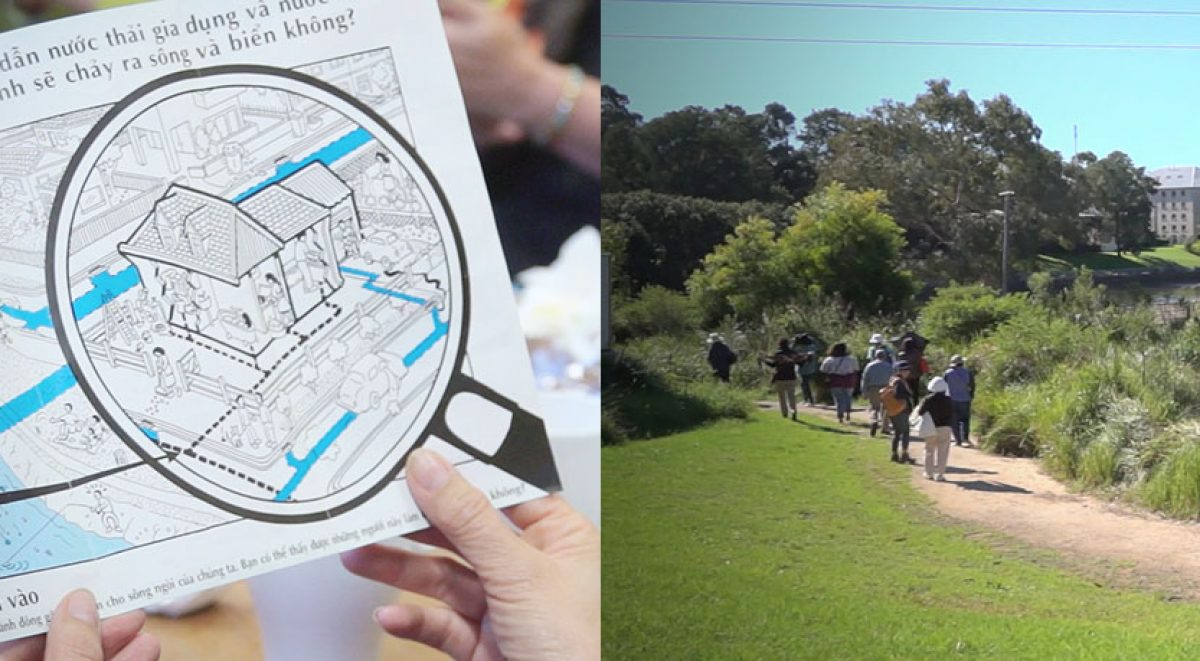 Cooks River water wise tour for culturally diverse communities