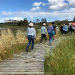 Cooks River Community Assembly at Landing Lights Wetland