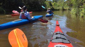 Kayaks on Wolli Creek