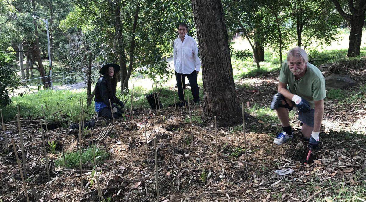 Three men planting in bushland