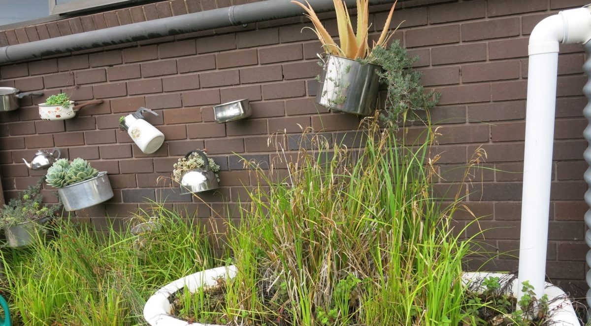 Backyard garden featuring bathtub filled with long grasses and old saucepans and pots filled with plants stuck to the wall